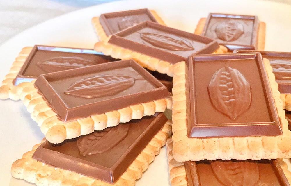 Natural Nectar Choco Dream Cookies