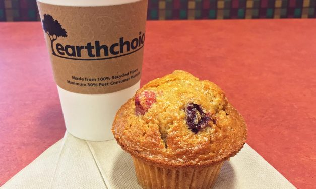 Earth Fare Cranberry Orange Nut Muffin