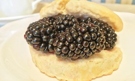 Trader Joe's Blackberry Shortcake