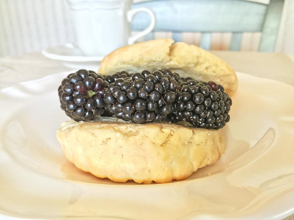 Trader Joe's Blackberry Shortcake with Coffee